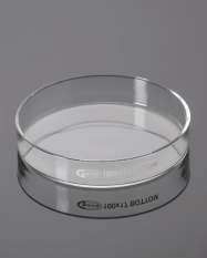 Dish Petri, Manufactured from BORO 3.3 Glass